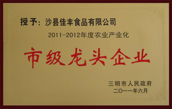三明市级龙头企业